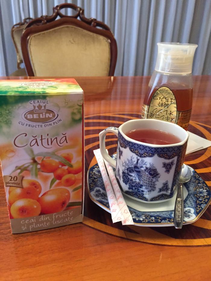 国際芸術家センター「大使館でお茶を第8回ルーマニア」