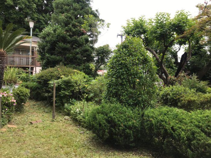 横山農園庭