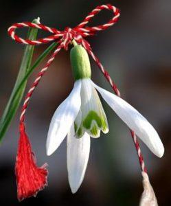 マルツィショールを象徴する春を告げる花スノードロップ